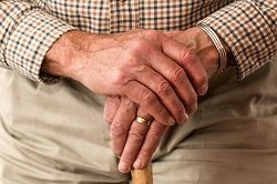aged-cane-elder-33786_resized
