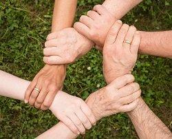 collaboration-community-cooperation-461049_resized